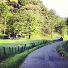 Good ole' West Virginia. Looks like something that stepped out of a watercolor. Located up the road from my house <3