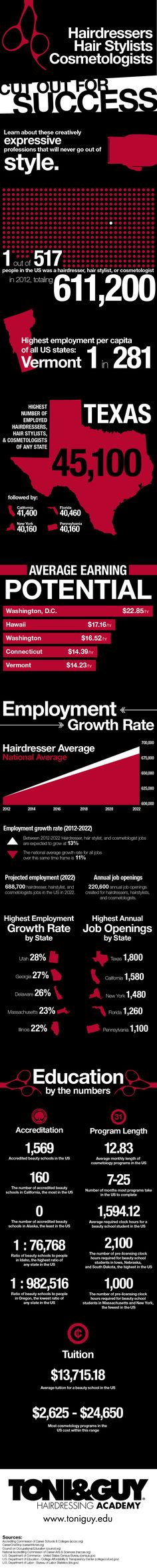 Infographic showcasing the current state and professional potential of hairdresser, hair stylist, and cosmetologist careers in the United States. Hair Facts, Toni And Guy, Salon Business, Beauty Industry, Cosmetology, Hairdresser, Salons, Infographic, Believe