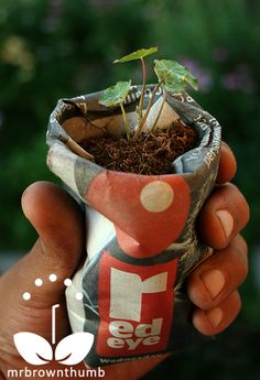 starter seed pots made from newspaper
