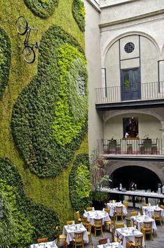 jardim vertical de musgos parede verde - Ideagrid _03