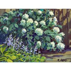 """Ray Hassard on Instagram: """"Hydrangeas & Hostas Gouache over casein 9"""" x 12"""" Today's plein air painting, done quickly in my own back yard! I should paint it, not just…"""" Hydrangeas, Gouache, Backyard, Painting, Instagram, Patio, Painting Art, Backyards, Paintings"""