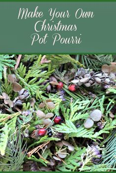 Make your own Christmas potpourri by gathering items from your garden and adding essential oils. Fill sachet bags, small pillows or just leave it in a bowl.