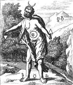 GOOSSEN VAN VREESWIJK De Goude Leeuw, 1675. Language of Birds