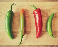 Adventures and Tea Parties: Thrifty Tips: Frozen Chillies