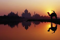 Taj Mahal & silhouetted camel & reflection in Yamuna River at sunset.  Lonely Planet Media    Richard I'Anson Lonely Planet Photographer    © Copyright Lonely Planet Images 2011