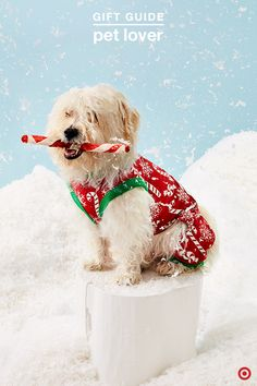 Give the pet lover on your list the best Christmas gift ever — cute holiday jammies, sweaters, toys and treats for their furry friends. Available in a variety of seasonal prints, patterns, colors and sizes, there's something for every pooch and kitty. It's a fun way to include pets in family fun, like photos and even waiting up for Santa.