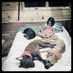 Kids and Dogs = perfection
