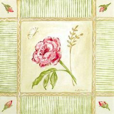 Oopsy Daisy - Cottage Rose - Left Leaning Canvas Wall Art 30x30, Colleen Phelon Hall