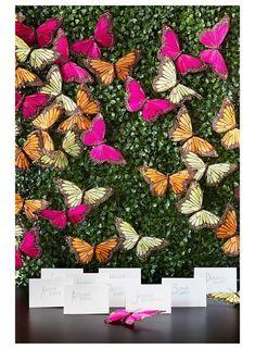 Butterfly & Boxwood Wedding Escort Card Backdrop