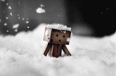 Danbo snow