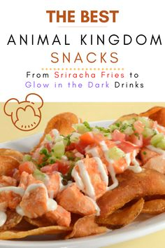 13 Best Snacks at Animal Kingdom [For the Foodies!] You'll get pretty hungry as you adventure through the wild at Disney World's Animal Kingdom! Have no fear though, here are the best snacks at Animal Kingdom. #animalkingdom #snacks #food #disney Snack Items, Food Items, Savory Snacks, Quick Snacks, Best Disney Restaurants, Seasoned Fries, Unique Recipes, Ethnic Recipes, Disney Tips