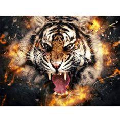 Ed Wallpaper, Tiger Wallpaper, Wallpaper Online, Animal Wallpaper, Wallpaper Backgrounds, Tiger Painting, Diy Painting, Art Tigre, Tiger Illustration