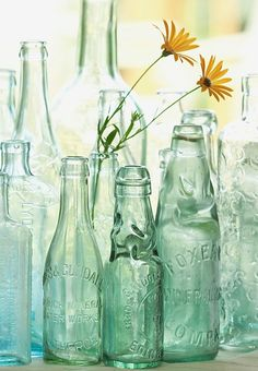AQUA BOTTLES Antique bottles no. old blue green bottles in morning light photo with sea glass colors Antique Bottles, Vintage Bottles, Bottles And Jars, Antique Glass, Glass Jars, Reuse Bottles, Mason Jars, Green Glass Bottles, Empty Bottles