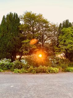 The Sun Setting Down in Liss Ard 🌅 Georgian Homes, Old Things, Victorian, Celestial, Sunset, Garden, Outdoor, Outdoors, Garten