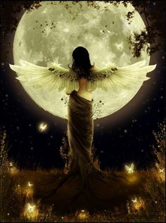 Moon Diva . . .  I hope you enjoy Fairyland. You will find all of the inhabitants of Fairyland by clicking on the image.