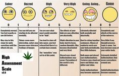 THE HOMEMADE HUMOUR: Find Out How High You Are On The High Assesment Scale! #weed #stoner #Stoned #high #herb #420 #lol