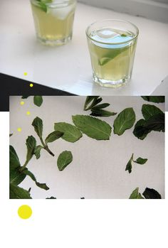 Zitronenlimonade  60 Gramm braunen Zucker in einem Liter (Mineral-)Wasser verrühren, zusammen mit dem Saft einer sehr großen Zitrone und dem dreier Limetten. Eine ordentliche Handvoll Minzeblätter waschen und im Mörser zu einer Paste massieren. Ebenfalls einrühren, das ergibt die kleinen tanzenden Punkte in der Limonade. Dann noch: lose Blätter als Schmuck. Gut durchkühlen - und später mit Eiswürfeln auftischen. Schlückchenweise.