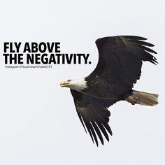 Soaring above it. #BusinessMindset101
