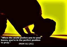 When the world pushes you to your knees, you're in the perfect position to pray. -Imam Ali (AS)