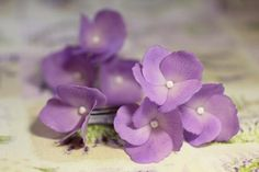 Blush Flower Girl Dresses, Blush Flowers, White Wedding Flowers, Rose Wedding, Diy Wedding, Flower Girls, Wedding Garter Lace, Bridal Lace, Lilac Hair