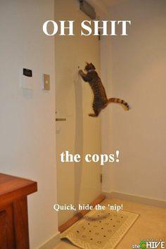 Cops!!