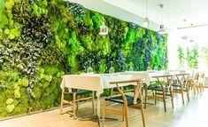 Urban Jungle Mos - Onze wanden zorgen voor het 'Wauw' effect! Decoration Plante, Moss Wall, Relax, Outdoor Furniture Sets, Outdoor Decor, Store Fronts, Plant Decor, Habitats, Vertical Gardens
