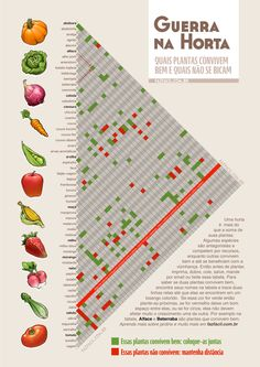 Horta caseira - Plantas companheiras