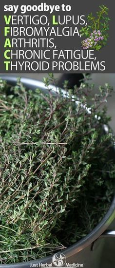 Thyme beverage - Say Goodbye To Vertigo, Lupus, Fibromyalgia, Arthritis, Chronic Fatigue, Thyroid Problems And Much More! #Thyroidproblemsanddiet