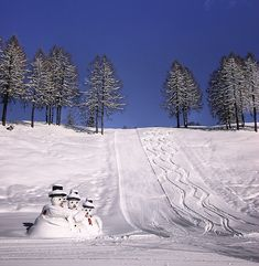 Guarding the Ski tracks