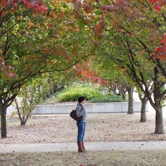 Canberra, autumn Top To Toe, Great Places, Autumn, Spaces, Style, Swag, Fall Season, Fall, Outfits
