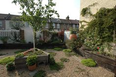 - Fruit and Veg Garden in East London - Earth Designs Landscape Gardener Leigh on Sea Essex Pea Shingle, Creeping Thyme, Slate Tiles, Railway Sleepers, Earth Design, Veg Garden, Fruit And Veg, East London, Raised Beds