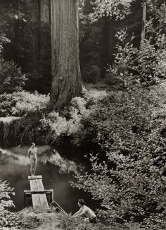 natgeofound:  A natural swimming hole in Prairie Creek Park in California, June 1938.Photograph by B. Anthony Stewart, National Geographic