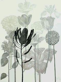 Diane Fogwell