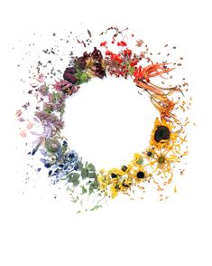 rainbow wreath | STILL (mary jo hoffman)
