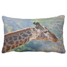 Rest your head on one of Zazzle's Giraffe decorative & custom throw pillows. Little Linda, African Giraffe, Giraffe Decor, Photo Pillows, Animal Pillows, Decorative Throw Pillows, Squirrel, Wildlife, Decor Room