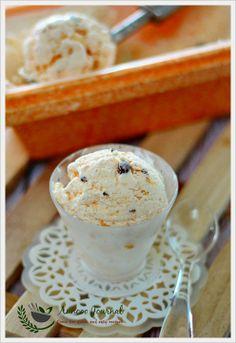 Orange Chocolate Chip Ice Cream