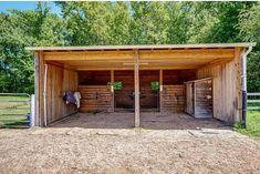 Barn Stalls, Horse Stalls, Stables, Horse Shed, Horse Barn Plans, Small Horse Barns, Campolina, Horse Paddock, Horse Barn Designs
