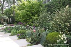 The garden featured wide, shallow steps which led down to the water feature. Garden Features, Water Features, Protea Flower, Flowers, Memorial Plants, The Time In Between, Rhs Hampton Court, Australian Plants, Drought Tolerant Plants