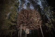 The Bird's Nest at Treehotel in northern Sweden; designed by architect Bertil Harström; photo by Peter Lundstrom / WDO