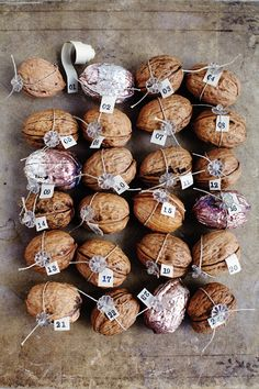 In a nutshell: advent calendar Clues inside to find hidden treats?