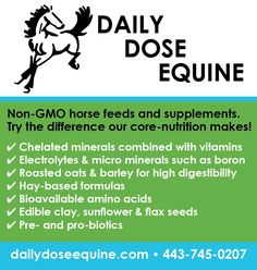 Try Daily Dose Equine feeds and supplements. Made without GMOs and harmful fillers, our roasted feeds and other formulas can greatly enhance your horse's well-being. Contact us for a FREE on-farm evaluation! Edible Clay, Horse Feed, Formula Cans, Amino Acids, Vitamins, Nutrition, Horses, Health, Salud