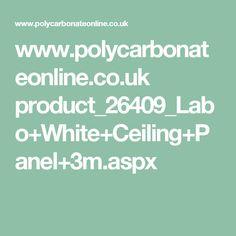 www.polycarbonateonline.co.uk product_26409_Labo+White+Ceiling+Panel+3m.aspx