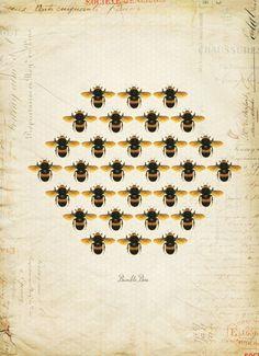 Bees. Abelles