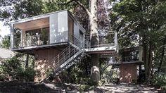 THE URBAN TREE HOUSE 7