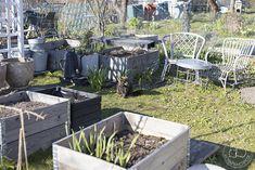Oravankesäpesä: KORONAVAPPU 2020. Patio, Outdoor Decor, Home Decor, Vegetable Gardening, Homemade Home Decor, Yard, Terrace, Decoration Home, Interior Decorating