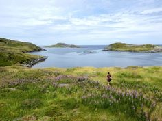 With over 200 km of paths, routes, and trails, Fogo Island is a destination for hikers and walkers that sometimes feels like another world. Fogo Island Newfoundland, Newfoundland And Labrador, Fogo Island Inn, Epoch Time, Island Tour, Another World, Paths, The Outsiders, Trail