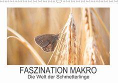 Faszination Makro - Die Welt der Schmetterlinge - CALVENDO