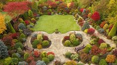 A garden in Walsall is showing off spectacular autumn colours. -  West Midlands of England
