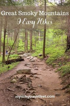Smoky Mountain Trails, Smoky Mountains Hiking, Smoky Mountain Waterfalls, Smoky Mountain National Park, Mountain Hiking, Great Smoky Mountains, Smokey Mountain, Appalachian Mountains, Adventure Time