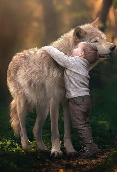 The Boy and the Wolf (.very touching, the wolf looks pleased, lol ♥) J Wolf Spirit, My Spirit Animal, My Animal, Funny Animal, Wolf Love, Animals For Kids, Animals And Pets, Cute Animals, Wolf Pictures